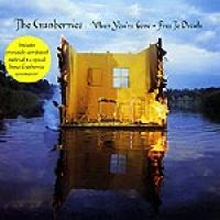 Cover The Cranberries - When You're Gone
