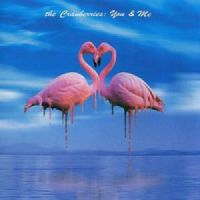 Cover The Cranberries - You & Me