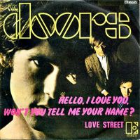 Cover The Doors - Hello, I Love You, Won't You Tell Me Your Name?