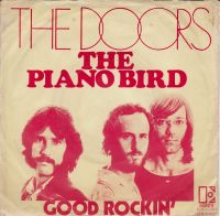 Cover The Doors - The Piano Bird