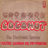 Cover The Electronic System - Coconut