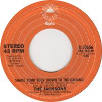 Cover The Jacksons - Shake Your Body (Down To The Ground)