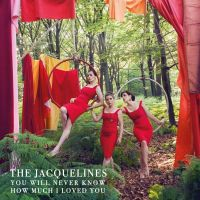 Cover The Jacquelines - You Will Never Know How Much I Loved You