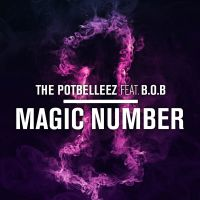 Cover The Potbelleez feat. B.o.B - Magic Number