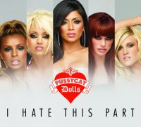Cover The Pussycat Dolls - I Hate This Part