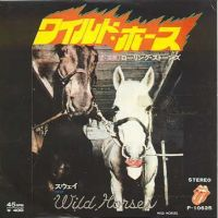 Cover The Rolling Stones - Wild Horses
