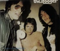 Cover The Stooges - What You Gonna Do (Live)