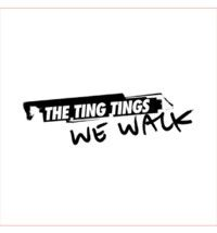 Cover The Ting Tings - We Walk