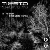 Cover Tiësto feat. Christian Burns - In The Dark (First State Remix)