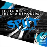 Cover Tiësto & The Chainsmokers - Split (Only U)