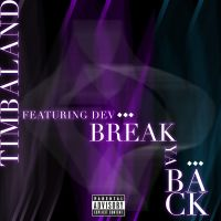 Cover Timbaland feat. Dev - Break Ya Back