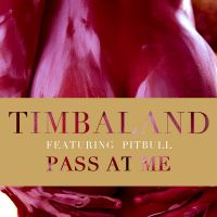 Cover Timbaland feat. Pitbull - Pass At Me