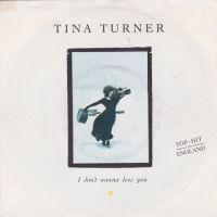 Cover Tina Turner - I Don't Wanna Lose You