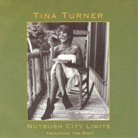 Cover Tina Turner - Nutbush City Limits