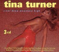 Cover Tina Turner - River Deep - Mountain High