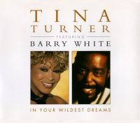 Cover Tina Turner feat. Barry White - In Your Wildest Dreams