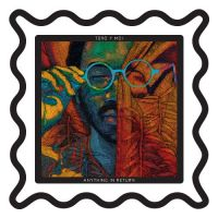 Cover Toro Y Moi - Anything In Return