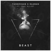 Cover Tungevaag & Raaban feat. Isac Elliot - Beast