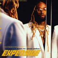 Cover Ty Dolla $ign feat. Nicki Minaj - Expensive