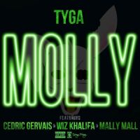 Cover Tyga feat. Cedric Gervais, Wiz Khalifa & Mally Mall - Molly