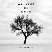 Cover Walking On Cars - Speeding Cars