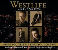 Cover Westlife with Diana Ross - When You Tell Me That You Love Me