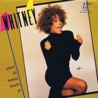 Cover Whitney Houston - Where Do Broken Hearts Go