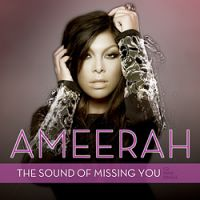 Cover Wildboyz feat. Ameerah - The Sound Of Missing You