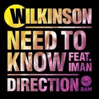 Cover Wilkinson feat. Iman - Need To Know