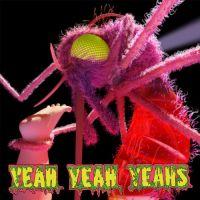 Cover Yeah Yeah Yeahs - Mosquito