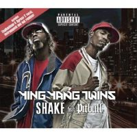 Cover Ying Yang Twins feat. Pitbull - Shake