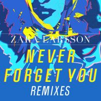 Cover Zara Larsson & MNEK - Never Forget You