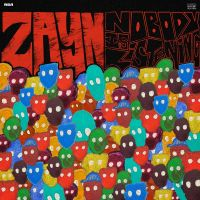 Cover Zayn - Nobody Is Listening