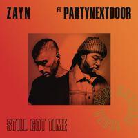 Cover Zayn feat. PartyNextDoor - Still Got Time