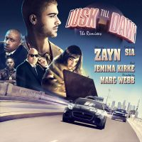 Cover Zayn feat. Sia - Dusk Till Dawn