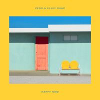 Cover Zedd & Elley Duhé - Happy Now