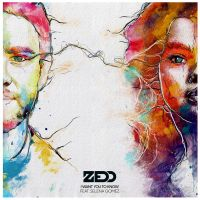 Cover Zedd feat. Selena Gomez - I Want You To Know