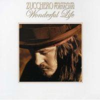 Cover Zucchero Sugar Fornaciari - Wonderful Life