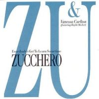 Cover Zucchero & Vanessa Carlton feat. Haylie Hecker - Everybody's Got To Learn Sometime