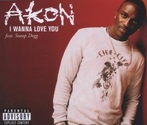 ultratop be - Akon feat  Snoop Dogg - I Wanna Love You