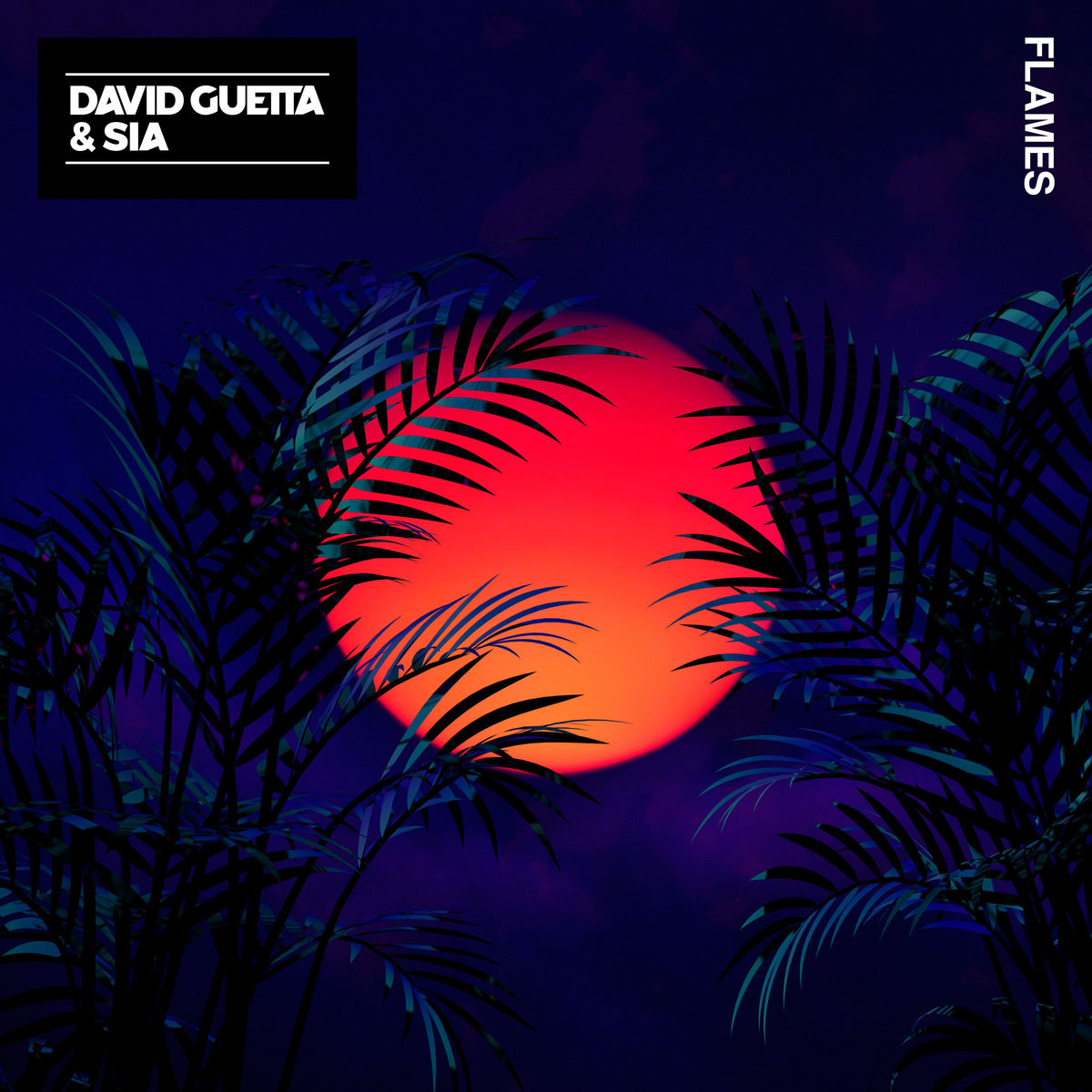 ultratop be - David Guetta & Sia - Flames