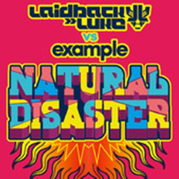 Natural disaster (uk radio edit) laidback luke vs. Example | shazam.