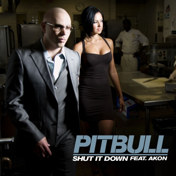 ultratop be - Pitbull feat  Akon - Shut It Down
